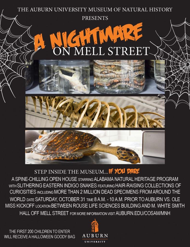 nightmare-mell-street