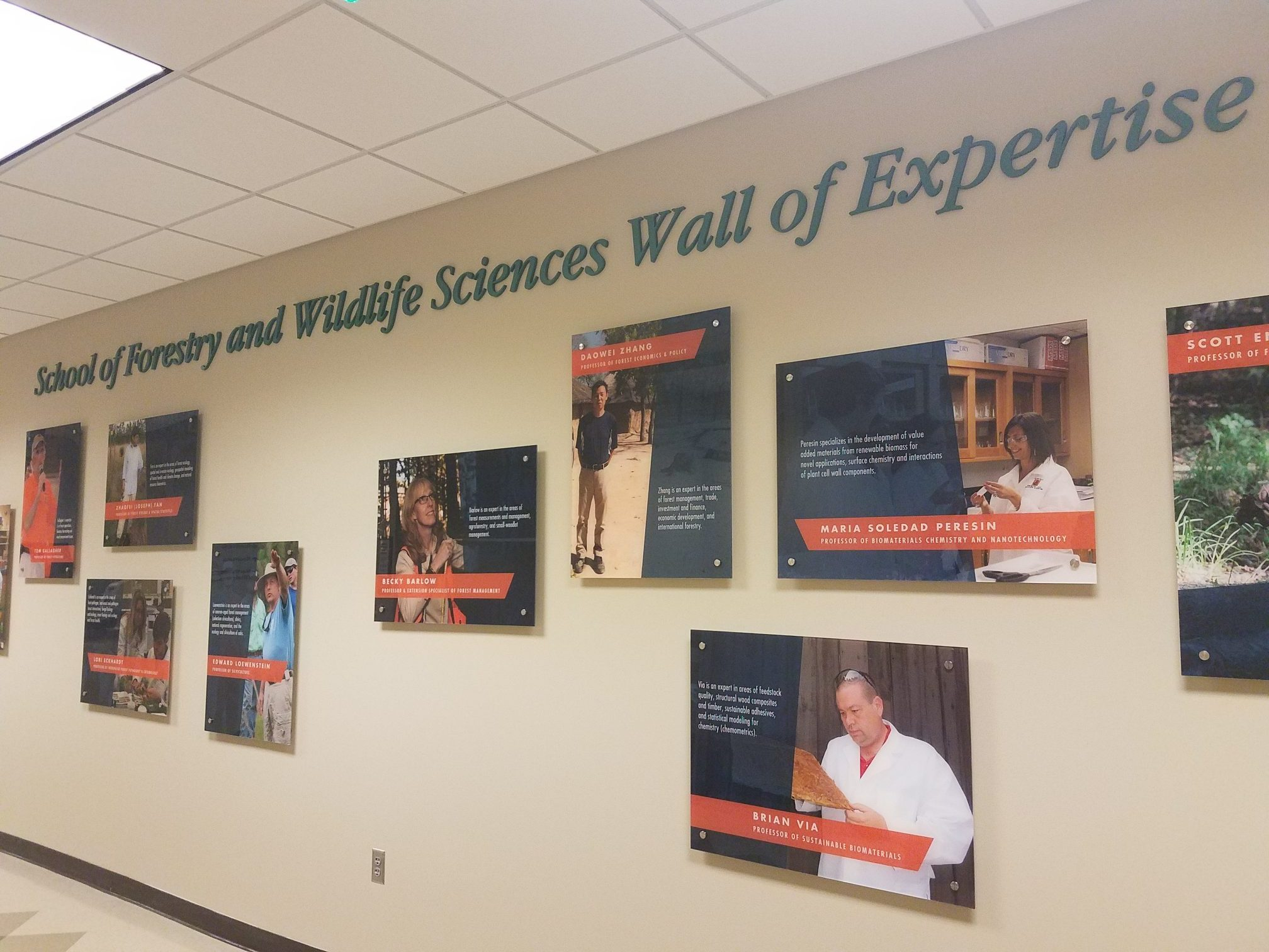Picture SFWS Wall of Expertise