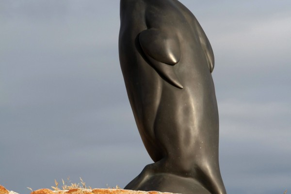 Todd McGrain, Great Auk, The Lost Bird Project, Photo courtesy of The Lost Bird Project