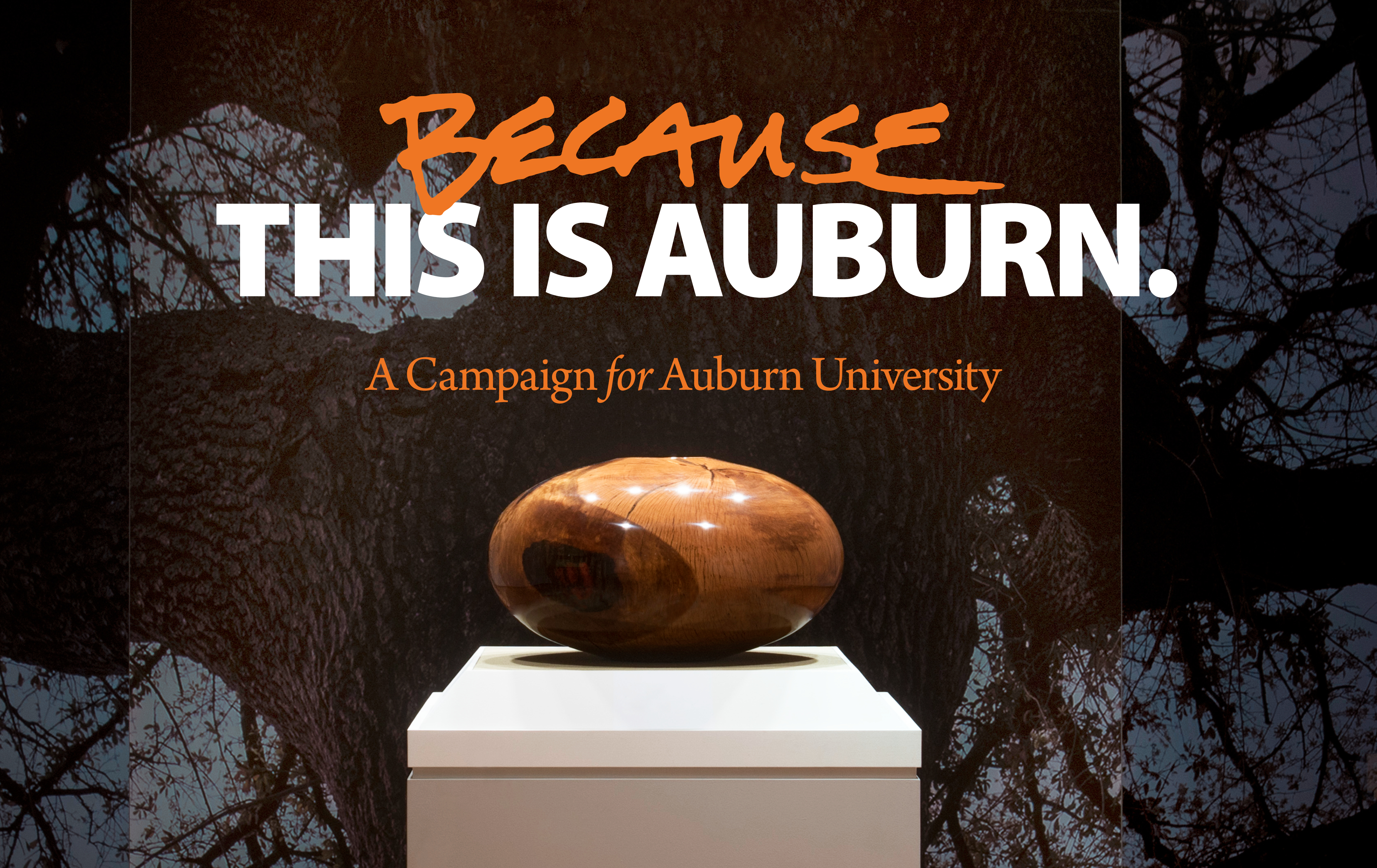 auburn university essay questions Study 6 essay questions flashcards from jon s on studyblue.