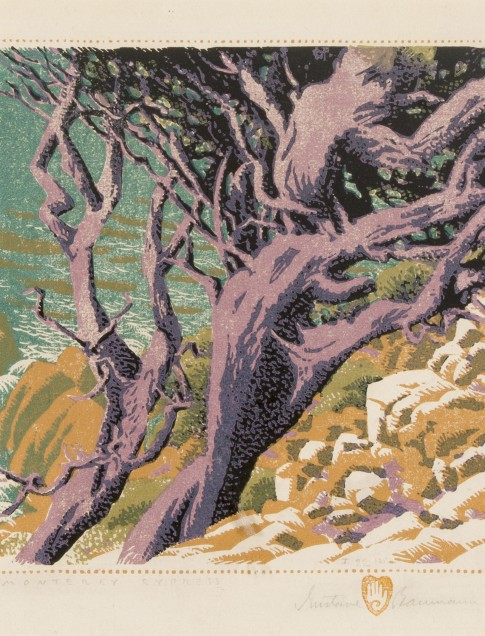 Gustave Baumann (American, b. Germany, 1881–1971), Monterey Cypress, color woodcut, edition: 22/125, collection of Robert B. Ekelund, Jr. and Mark Thornton