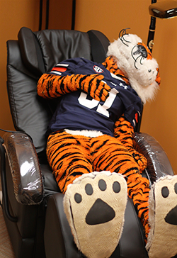 Aubie relaxes in the Zen Den